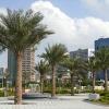ХАБИБ VS ПОРЬЕ: ГДЕ МАКГРЕГОР – СТАВКИ В ОАЭ
